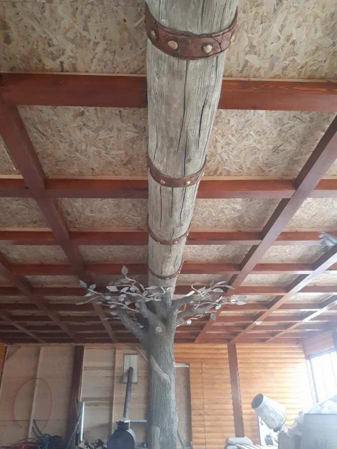 derevja-beton-19